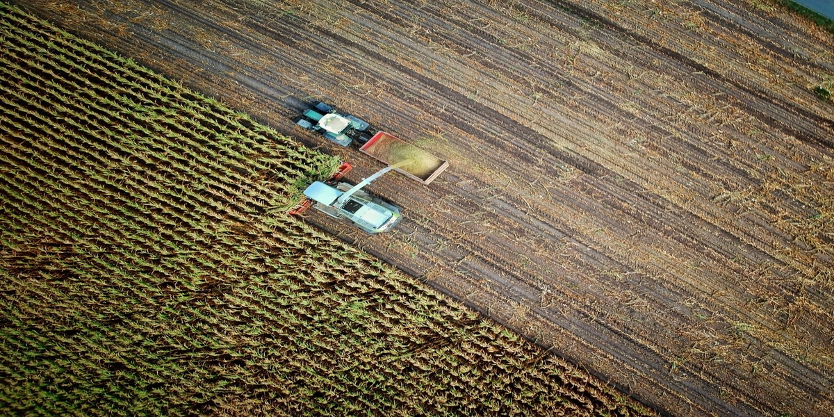 What is the Future of Agriculture?