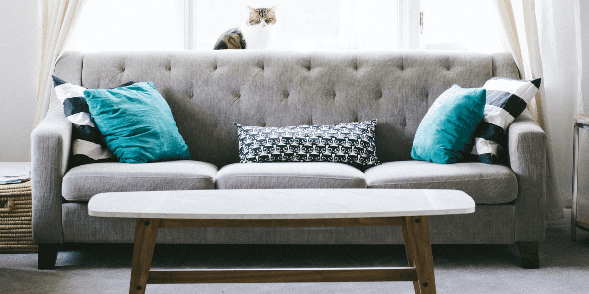 How Knowledge Ridge Enabled First-Hand Expert Insights into the Growth Landscape for Home furnishings in Nordic Countries for a European Voluntary Service in Romania